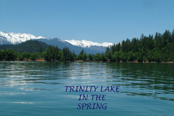 Trinidad Lake notecard